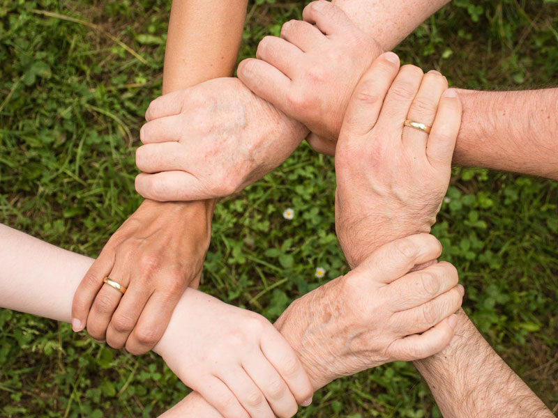 Hands forming a shape of support